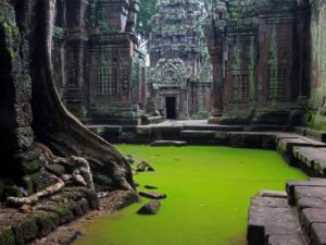Cambodia - Dynamic Tours. Sobre nosotros